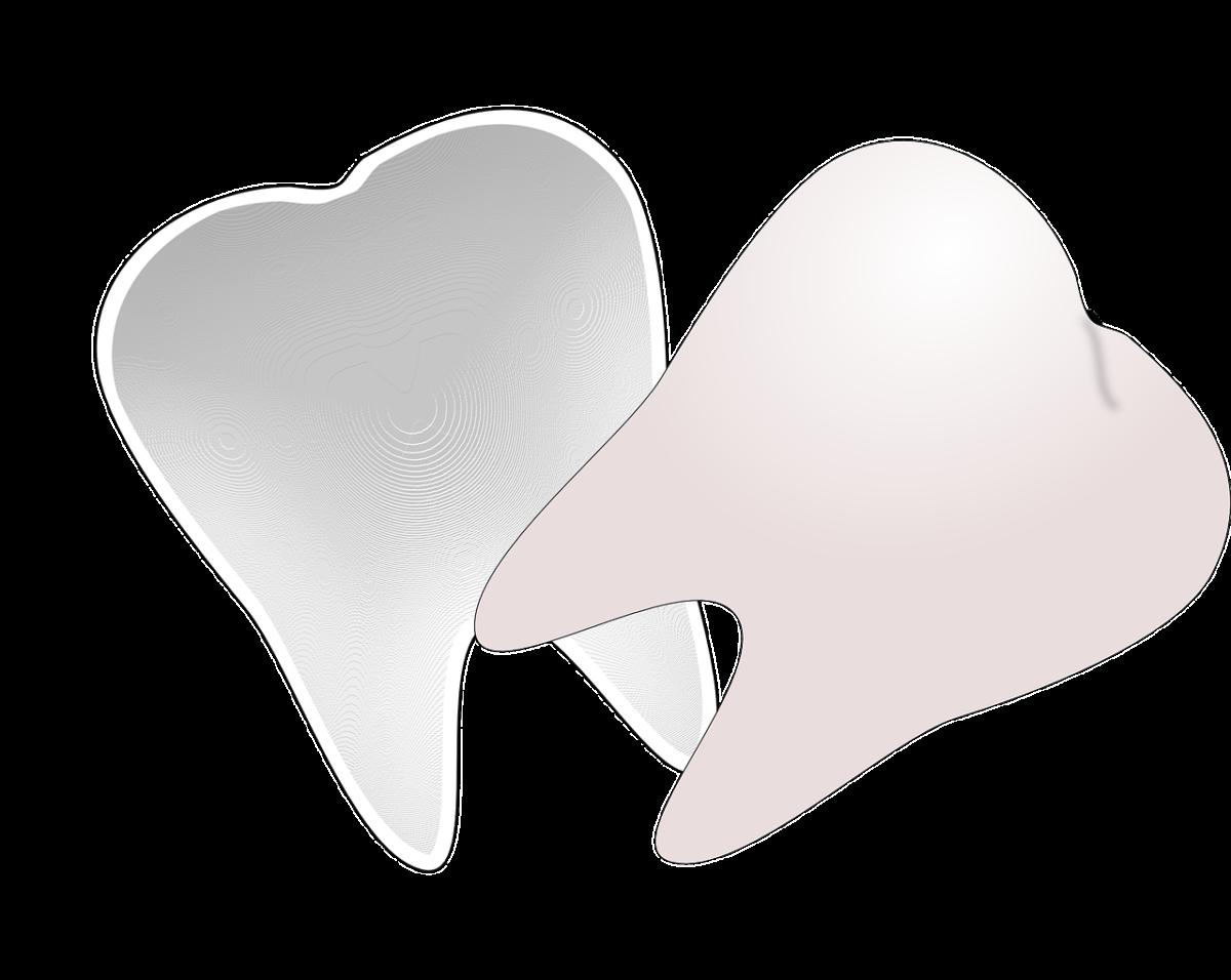 Przepiękne nienaganne zęby również efektowny przepiękny uśmiech to powód do płenego uśmiechu.